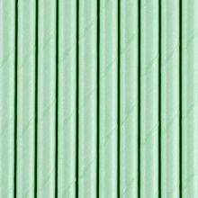 Strohhalm Mintgrün